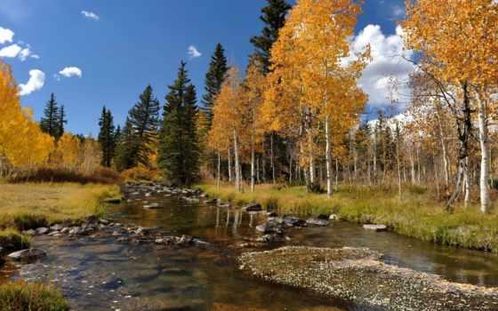 осень, река, landscape Фон № 83909 разрешение 1920x1080