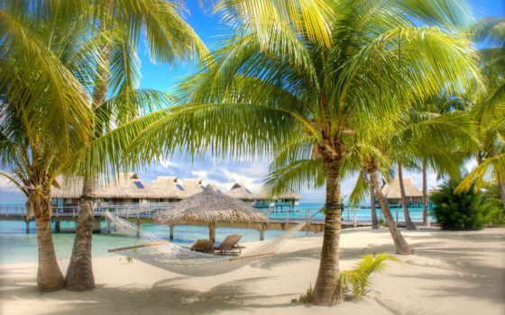 пальмы, море, пляж, песок, гамак, бунгало, широкоформатные,
