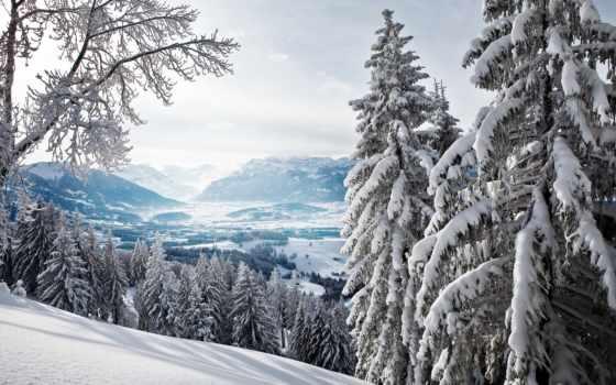 winter, горы, лес, eli, долина, природа,