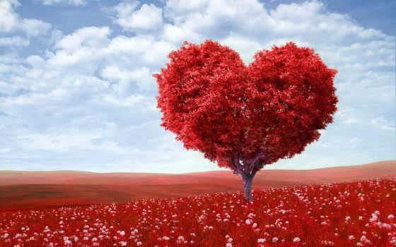 love, you, любви, дерево, номерам, картинка, what,