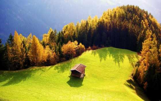 лес, card, природа, lodge, sun, osen, коллекции, house,