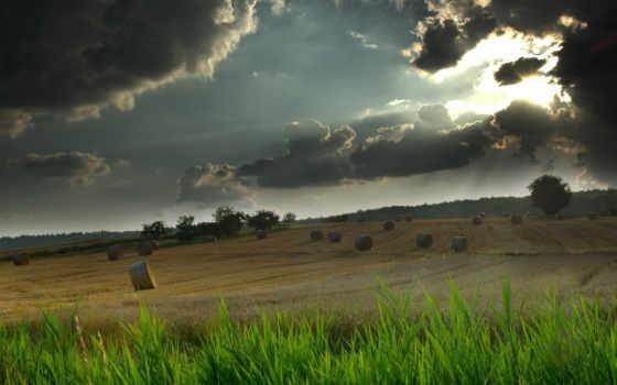 поле, cloud, теме, красивых, листинг, nature, sky, download, deutsch, this, puzzle, rain, свет, кошеной, рядом, natural, трава, закат, ov,