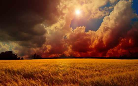 закат, поле, небо