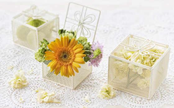 цветы, макро, cvety, роза, flowers, mobile, roses,