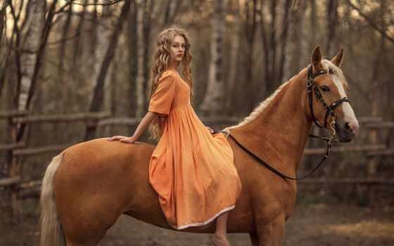 гнедой, rus, лошадь, верхом, long, hamarang, изображение, herb, darling, rusia