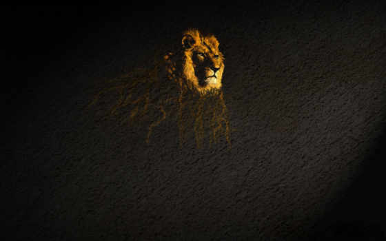 лев, подтёки