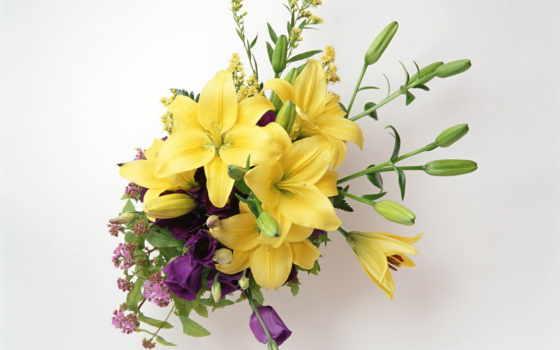 букеты, цветы, розы