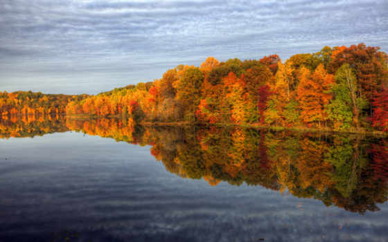 осень, природа, деревья Фон № 79997 разрешение 1920x1200