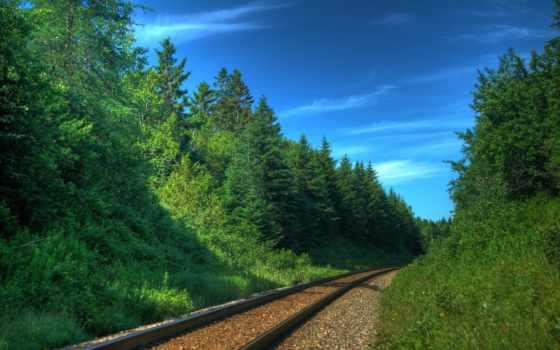 дорога, железная, рельсы, поезда, шпалы, поезд, пути, дороги, trees,