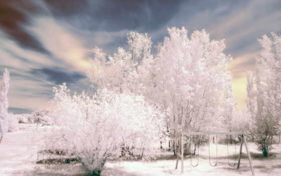 winter, природа, страница, лес, trees, красоты, природы, осень,