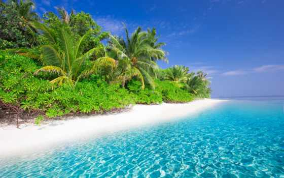 пляж, море, landscape, ocean, tropic, tropical, sun, закат, palm