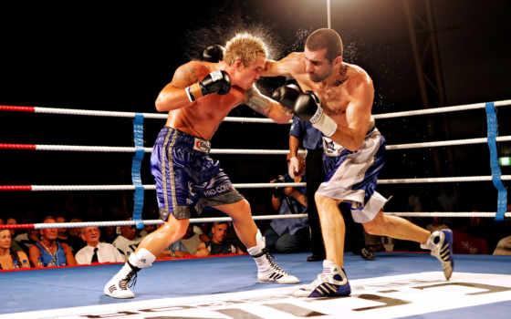 ринге, боксерском