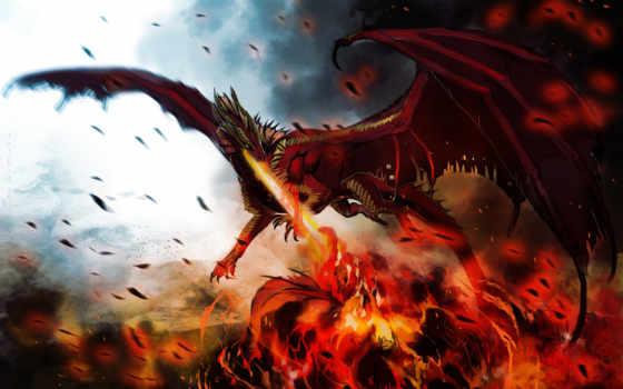 красивые, дракон