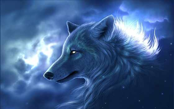 волк, animal, коллекция, fantasy, nothing, имена, write, группа, artist