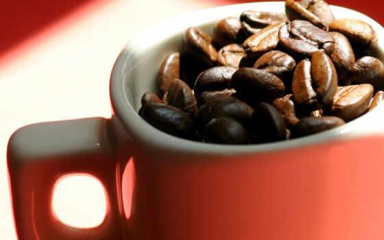 кофе, кружка, макро, зерна,