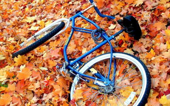 велосипед, осень, велосипеде
