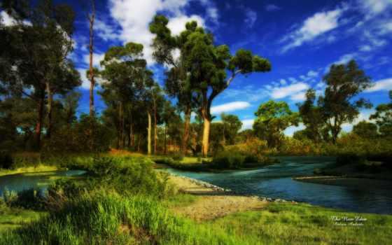природа, new, free, об,