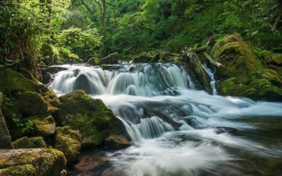 англия, река, cornwall, rivers, golitha, falls, desktop, fowey, free,