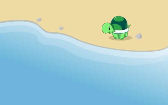 черепаха, море