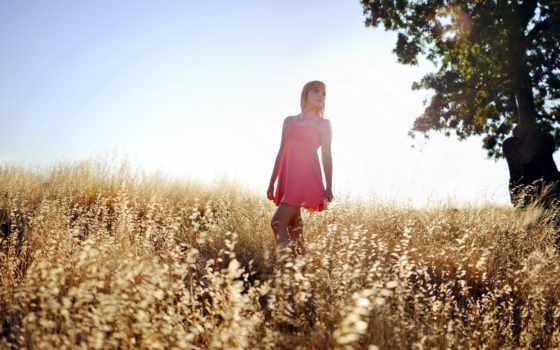 девушка, поле, summer