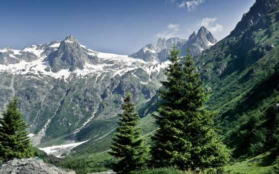 mountains, trees, гора, snowy, снег, природа, winter, pin, дерево,