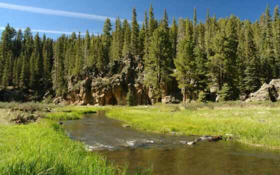 fore, река, дерево, pine, landscape, зелёный, гора, лес, park, природа