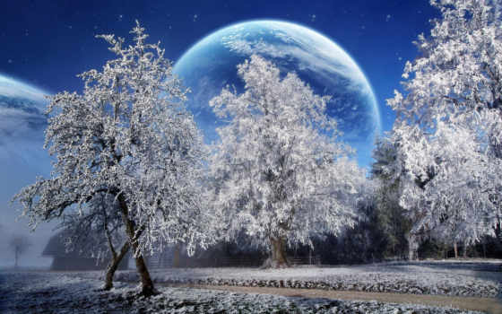 winter, снег, красивые