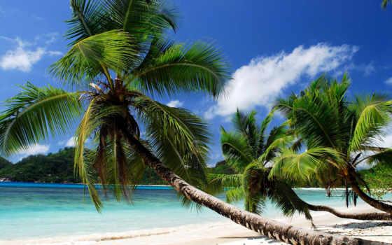 острова, сейшельские, seychelles, gifs, океана, mae, остров, индийского, островов, туры,