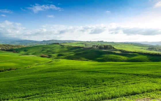 aire, puro, con, prados, verdes, paz, espiritual, natural, paisaje, smartphone,