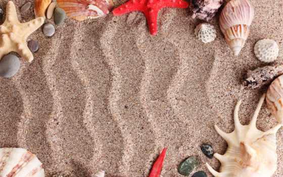 песок, пляж, море, summer, ракушки, узоры, камни, раковины, звезды, картинка, морские,
