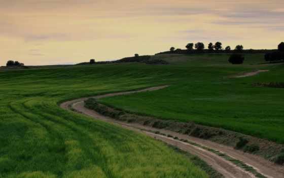 поле, трава, дорога, country, природа, поля, зелёный, landscapes, skyscapes,