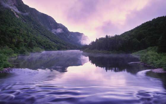 река, туман, туманом, покрытая, горы, summer, природа, поросших, лесом, густым, cartier,