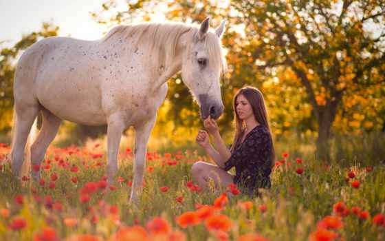 девушка, summer, радость, поле, poppy, ребенок, платье, цветы, лошадь