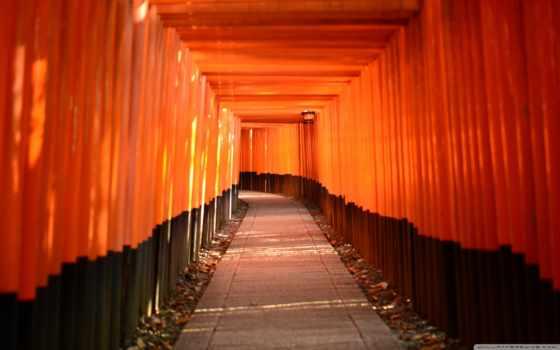 shrine, top, fushimus, inari, dark, science, art, liberal, природа, much