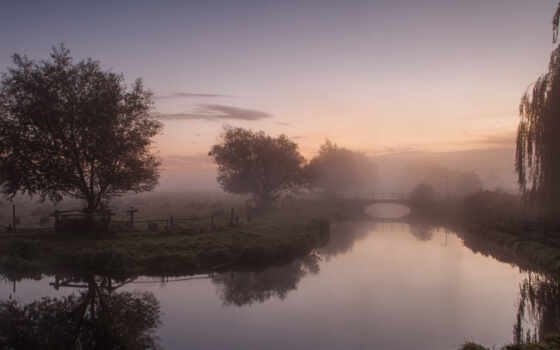 туман, река, утро, деревья, мост, landscape, willow, оражение,