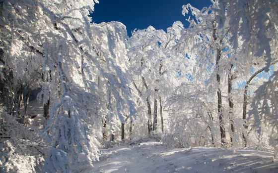 ago, дней, морозы, впереди, февраля,