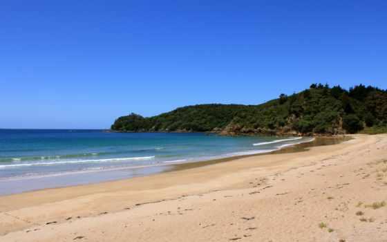 песок, берег, пляж, отвилистый, ест,
