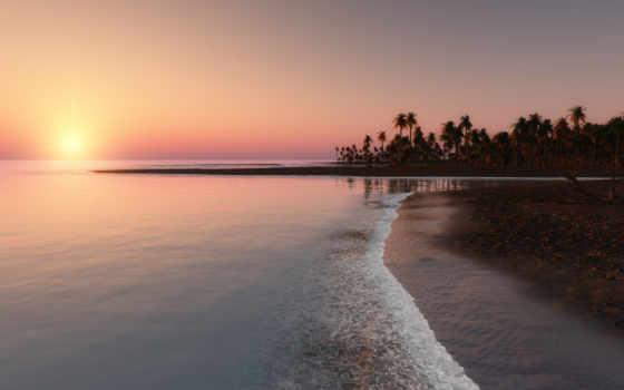 закат, ocean, пальмы