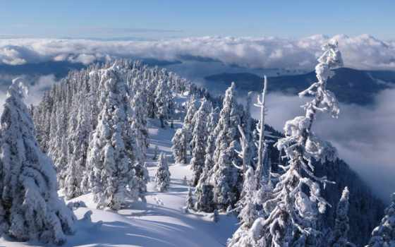 winter, природа, горы, канадский, north, trees, снег, берег, mountains, british, елки,