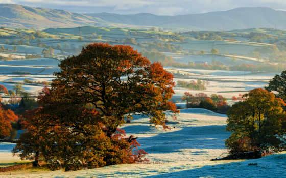 trees, осень, margin, иней, снег, шпалери, initial, холмы, компьютер,