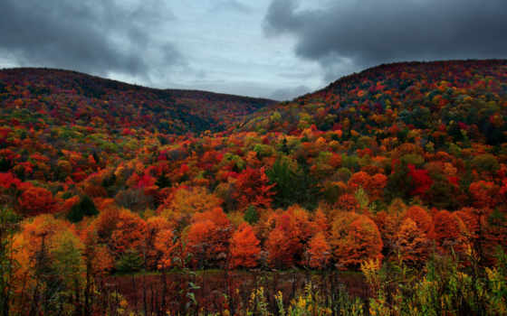 осень, шпалери, лес, компьютер, природа, горы, года, trees, virginia, небо, тучи,