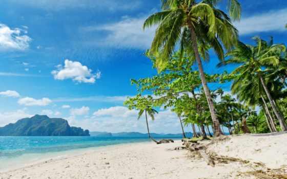 пляж, море, пальмы, песок, oblaka,