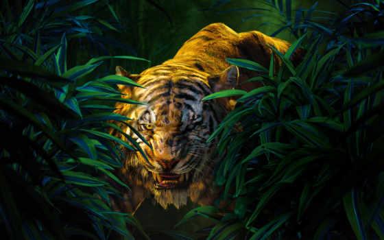 книга, jungle, shere, сниматься, khan, libro, джунглей, della, giungla,