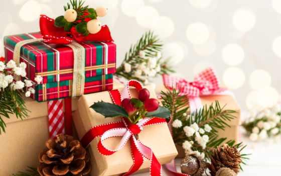 год, new, подарки, собаки, подарков, новым, годом, хатутик, give,