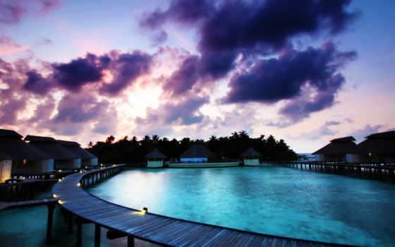 maldives, бунгало, бассейн,