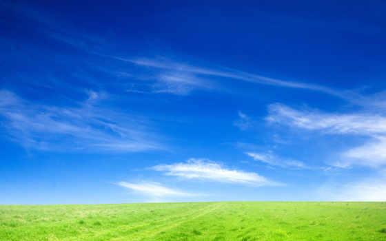 горизонт, небо, поле, природа, трава, margin, зеленого,