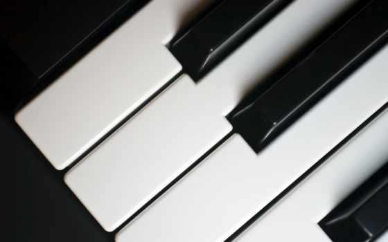 piano, клавиши, jesse, free, музыка, tikka, listening, you,