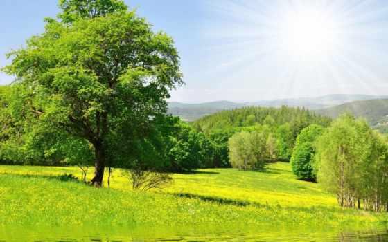 природа, солнце