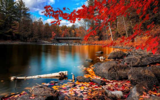 горы, природа, леса Фон № 38586 разрешение 2560x1600