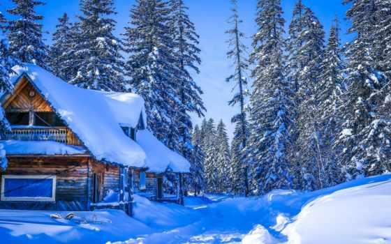 winter, россия, снег, хабаровск, trees, край, лес, гора, house,